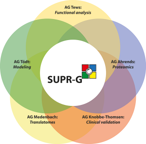 SUPR-G-Overview