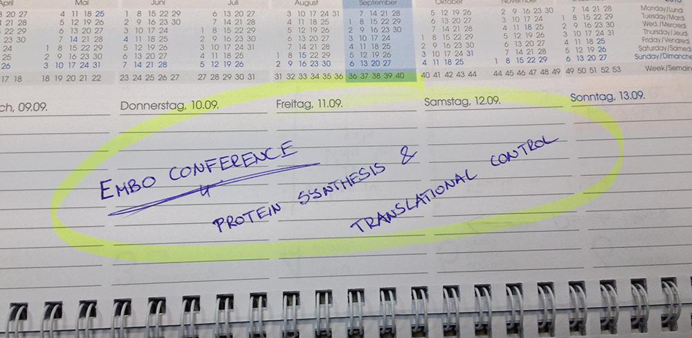 TC-Meeting-date